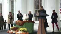 RITV Vidéo <br>USA : la farce du dindon