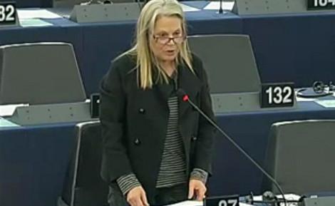 Le rapport Estrela rejeté RITV Texte
