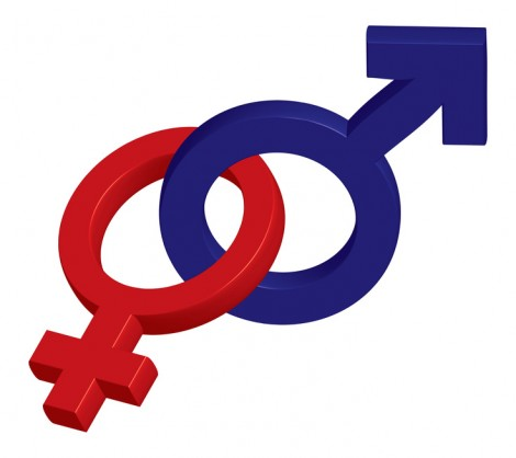 Gender pour les maternelles bordelaises