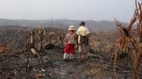 La déforestation, problème politique