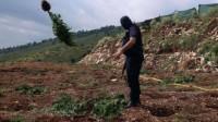 L'Albanie efface sa tache de cannabis