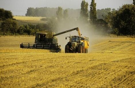 Sanctions Russie catastrophe agriculture