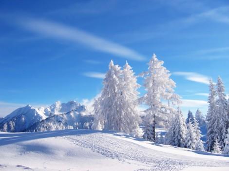 Hivers froids Réchauffement climatique