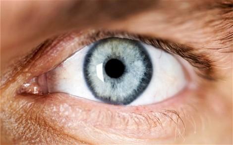 cellules souches pour les yeux