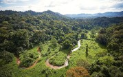 Honduras: Une cité perdue découverte dans la jungle