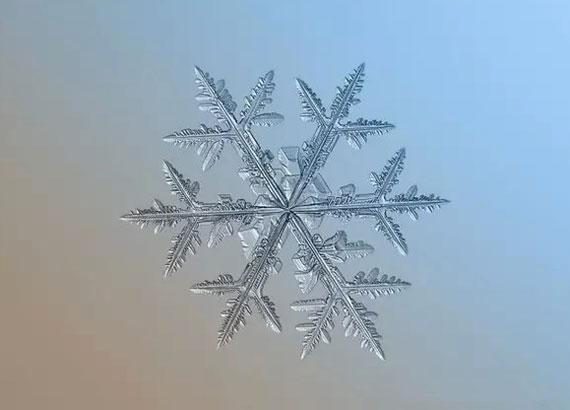 flocons-de-neige-1
