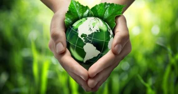 éducation verte citoyens monde mondialiste forum ONU Corée du Sud
