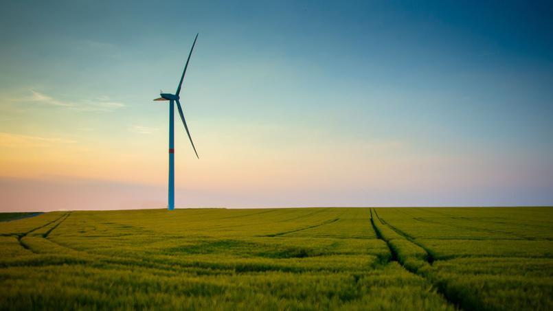 L'énergie renouvelable ne favorise pas forcément l'emploi