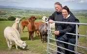 Royaume-Uni: fin du cauchemar pour un couple qui avait acheté une éolienne défectueuse à Evoco Energy