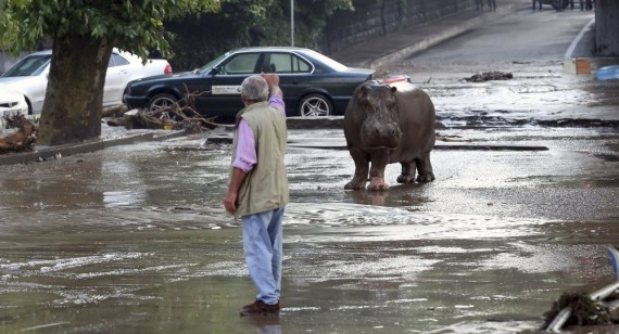 Innondations Tbilissi georgie 2