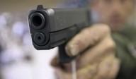 Nouvelles réglementations pour limiter le nombre de propriétaires d'armes à feu aux Etats-Unis