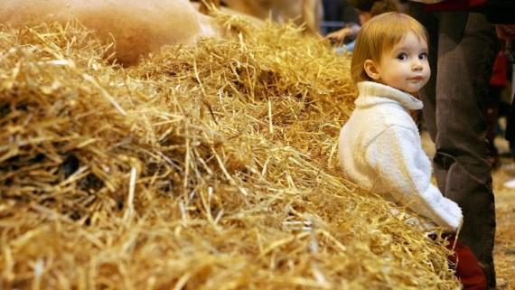 poussière ferme prévention asthme enfants