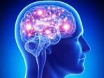 Bioéthique et manipulation de la mémoire: Matthew Liao voit dans le cerveau humain la «nouvelle frontière»
