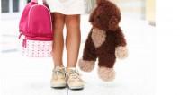 Minnesota: soutien d'un directeur d'école aux parents d'un enfant «transgenre» de 5 ans