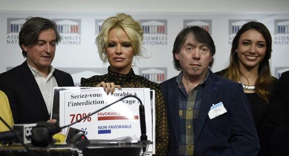 Pamela Anderson Assemblée Nationale Mondialisme Américain