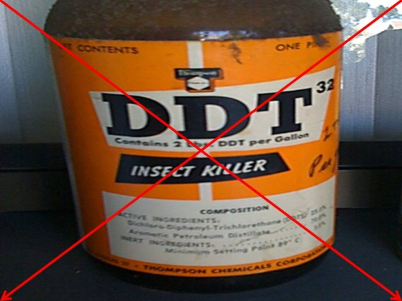 DDT virus Zika lever interdiction