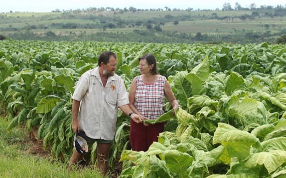 Zimbabwe fermier blanc expulsion médecin britannique Sylvester Nyatsura