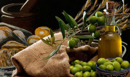 Bruxelles producteurs huile olive tunisiens