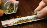 L'usage au cannabis en plein essor au Canada et en France chez les jeunes, selon l'ONU