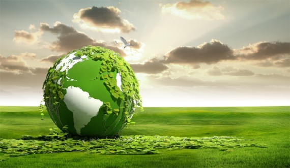 CO2 plus forte croissance feuillage étude verdissement