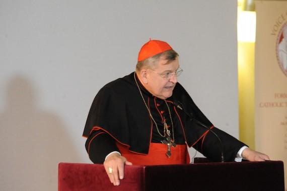 Cardinal Burke Amoris Laetitia Rétablir Foi Eglise Catholique