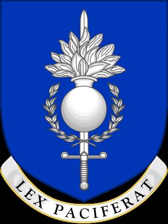 Police militaire UE entraînement désordres civils