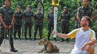 Brésil, jaguar, JO, Emojis: le totalitarisme bisounours à la conquête du monde