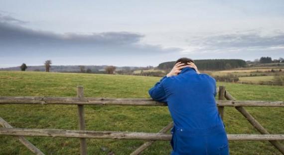 Monde Agricole Suicide France Va Mieux