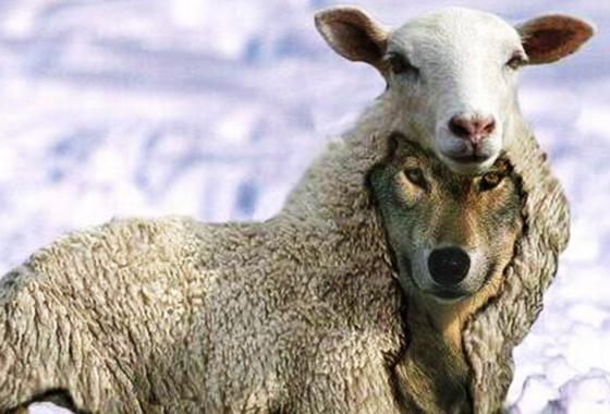 Sauvageons Chevènement Cazeneuve Mot Réalité Mesure Ensauvagement France