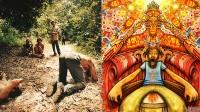 Une semaine de rencontres pour faire découvrir l'ayahuasca aux Canaries: la drogue New Age