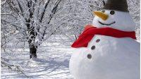Danemark: l'hiver arrive tôt cette année