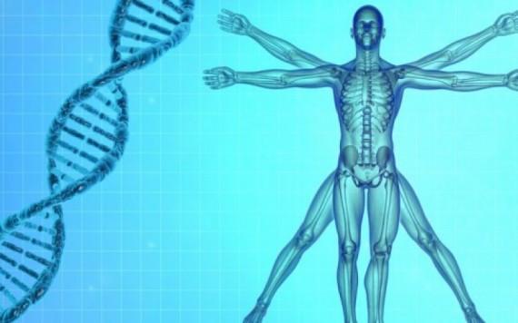 biologie synthèse écrire premier génome humain