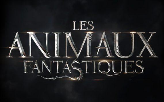 Animaux fantastiques fantastique enfants film