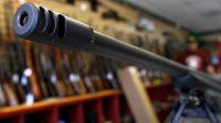 La République tchèque envisage d'armer ses citoyens pour combattre les djihadistes