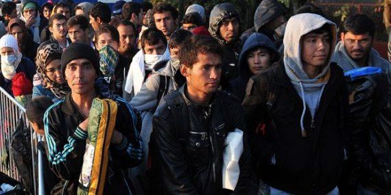 Sondage 40 migrants Autriche trop liberté