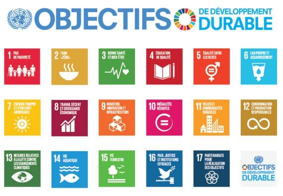 ONU agenda 2030 développement durable Peter Thomson contrôle Europe