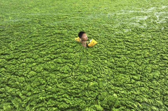 Chine leader mondial lutte changement climatique