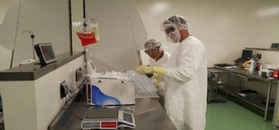 Thérapie génique: rémission complète pour des malades du cancer en phase terminale