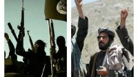 Coopération en vue entre Al Qaïda et Daech, selon le vice-président irakien