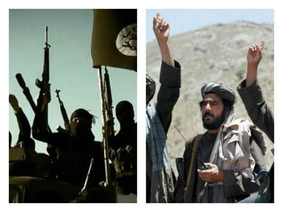 Coopération Al Qaïda Daech vice président irakien Ayad Allawi