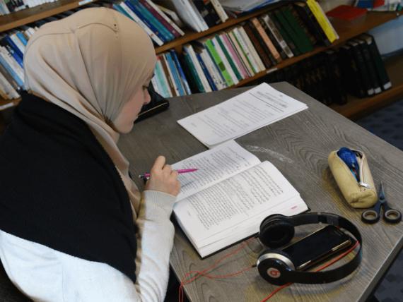 migrants professeurs suédois Suède