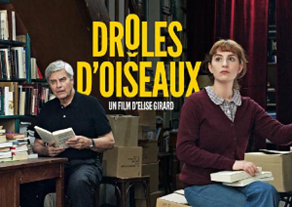 Drôles Oiseaux Comédie Dramatique Film