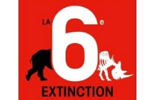 6e extinction masse disparition dinosaures
