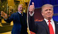 Al Gore attaque Donald Trump sur le réchauffement climatique et l'accuse de nuire à la position des États-Unis en refusant l'accord de Paris