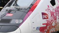 Gros retard du premier TGVParis-Toulouse par la ligne nouvelle LGV Océane:la caricature d'un réseau à deux vitesses