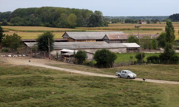Serbie loi limiter achats terre étrangers