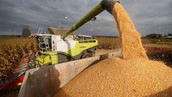 UE oblige agriculteurs stocker céréales destinées marché biocarburants