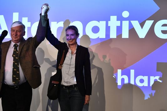 Elections Législatives Allemagne Percée AFD