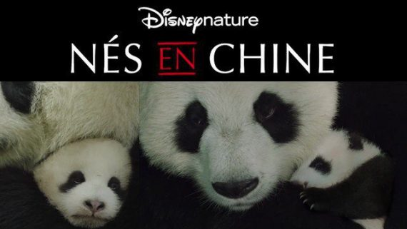 Nés Chine Documentaire enfants film