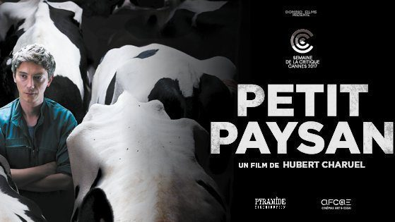 Petit Paysan Drame Film